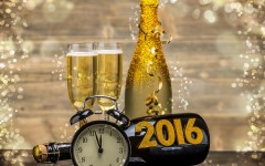 biozevtika_happy_new_year_2016