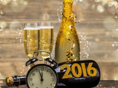 biozevtika_happy_new_year_2016