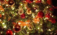 biozevtika_happy_new_year_2017_002